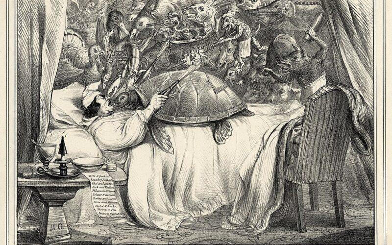 Drei Varianten der Schildkrötensuppe